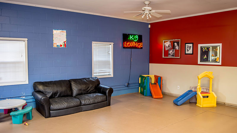 La de da K9 lounge indoor play