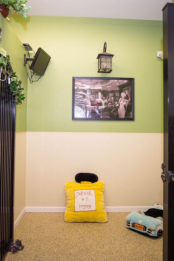 la-de-da resort dog boarding suite